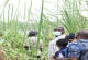 ASANTE KINGDOM LANDSCAPE RESTORATION PROGRAMME MOBILIZES STAKEHOLDERS TO PROTECT WATER BODIES